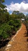Community Garden Sydney